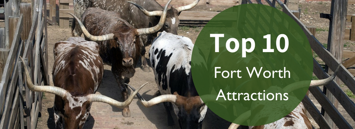 top-10-fort-worth-attractions