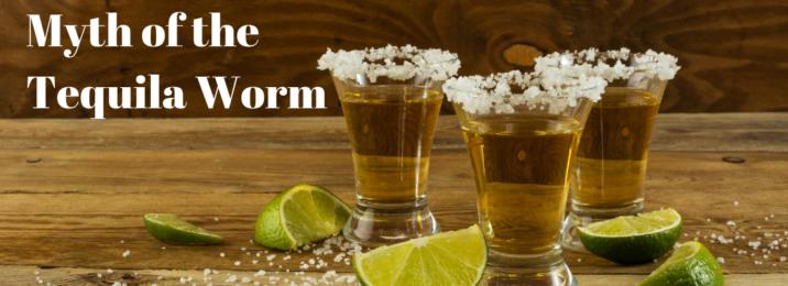 tequila-worm-myth